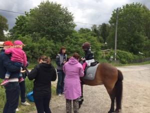 Hästarna var populära!